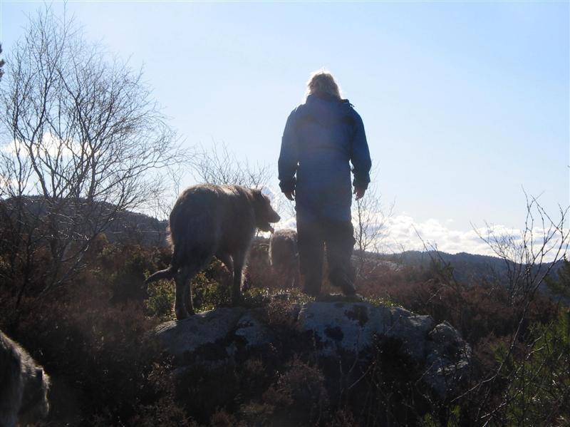 mann jaget av elg